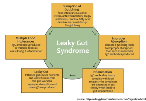 leaky+gut
